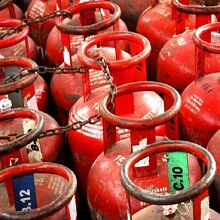 second largest lpg importer