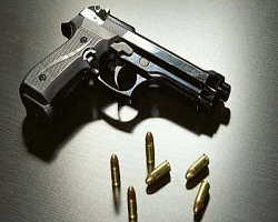 top Indian State with highest active gun licences