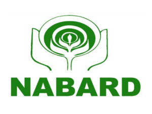 NABARD Area development plan for Punjab Launched Worth Rs 1,918 cr