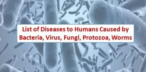 List of Human Diseases caused by Bacteria, Virus, Fungi, Protozoa, Worms to Humans